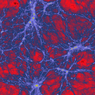 125 million collisionless cold dark matter particles (Thompson & Nagamine, 2010)